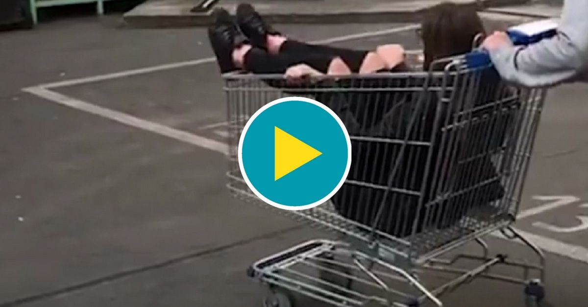 einkaufswagen-fahren-vorschau