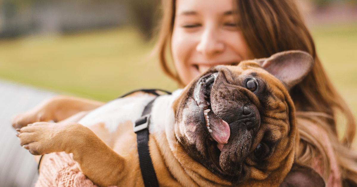 Dieser Vorher-Nachher-Vergleich von Menschen und ihren Haustieren rührt dich zu Tränen!
