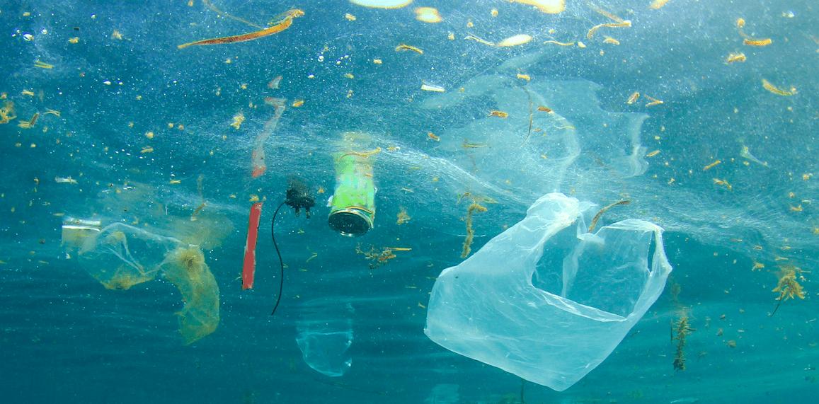 Disney vs Umweltverschmutzung