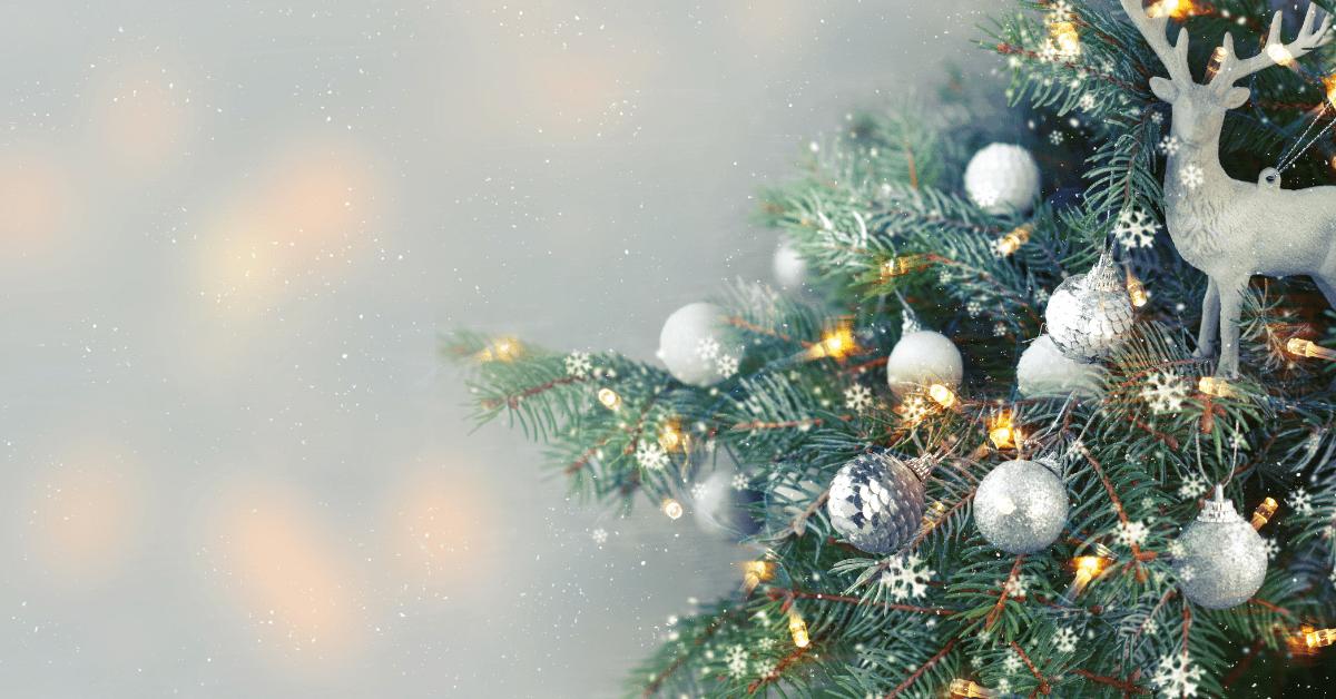 Weihnachten Quiz Weihnachtsmann Santa Claus Tannenbaum
