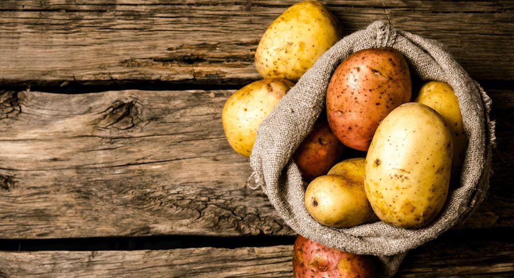 Beste Kartoffelgerichte
