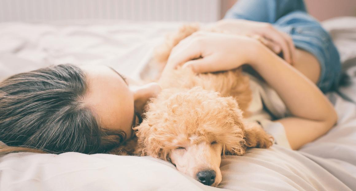 Fotos von Menschen und ihren tierischen Freunden
